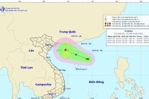 Vừa dứt nắng nóng, các tỉnh Bắc Bộ đối diện nguy cơ bão cấp 11 đổ bộ