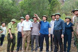Hà Tĩnh, Quảng Nam, Quảng Ngãi cơ bản đã khống chế, dập tắt cháy rừng