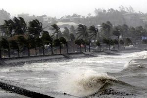 Các địa phương chủ động ứng phó áp thấp nhiệt đới