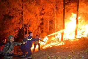 Hà Tĩnh: Đã dập tắt hoàn toàn cháy rừng tại Nghi Xuân