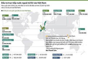 Đầu tư trực tiếp nước ngoài từ EU vào Việt Nam