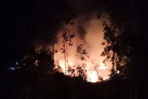 Cháy rừng suốt 1 ngày đêm tại Quảng Ngãi