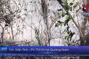 Quảng Nam cháy lớn tại rừng trồng nguyên liệu
