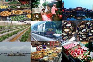 WB: Kinh tế Việt Nam đang tăng trưởng chậm