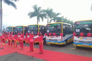 Khai trương thêm 6 tuyến xe buýt trợ giá tại Đà Nẵng