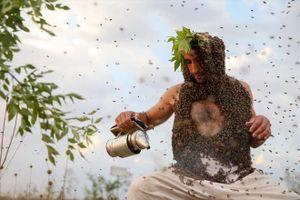 Người đàn ông Thổ Nhĩ Kỳ để 10kg ong bám trên cơ thể