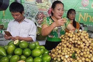 Tận dụng CPTPP: 'Đừng bỏ rơi nông dân'