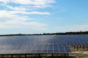Nhà máy điện mặt trời 1.500 tỷ đồng đầu tiên tại Hà Tĩnh chính thức đi vào hoạt động