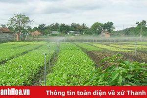 Tăng cường phát triển thủy lợi nhỏ, thủy lợi nội đồng và tưới tiết kiệm nước
