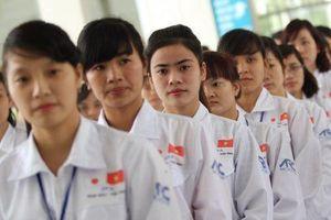 Triển khai chương trình lao động đặc định cho lao động trẻ Việt tại Nhật
