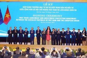 Thành lập Hội đồng doanh nghiệp Việt Nam - EU, thúc đẩy phê chuẩn và thực thi EVFTA và IPA
