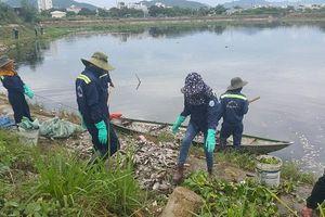 Đà Nẵng: Vì sao cá liên tục chết tại các sông hồ