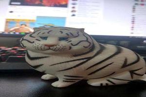 'Dở khóc dở cười' pha mua hàng online: Hổ oai phong hóa mèo...béo phì