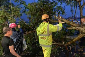Ảnh hưởng bão, cây xanh đổ va vào 2 phụ nữ đi trên đường phố Hà Nội