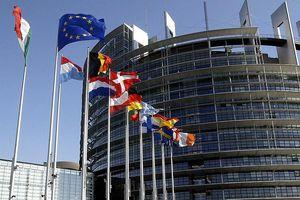 Hội đồng châu Âu yêu cầu Nga chi thêm 55 triệu euro