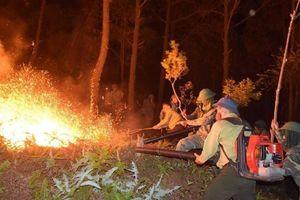 Vụ cháy rừng Hà Tĩnh: Vì sao nước gần không cứu được lửa ngay?