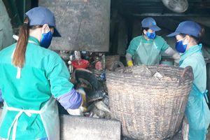 9 hũ sành chôn trong nhà máy rác Cà Mau chứa xương người