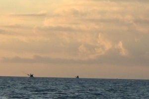 Cà Mau: Xác minh thông tin ngư trường biển bị một số đối tượng tự ý chiếm, bán