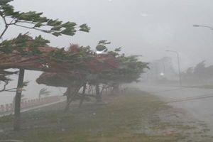 Đề phòng mưa lớn sau bão số 2