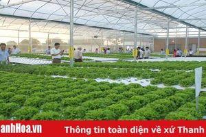Huyện Đông Sơn: Nhiều chính sách hỗ trợ, khuyến khích xây dựng nông thôn mới