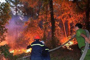 Sáu tháng, cả nước xảy ra 156 vụ cháy rừng