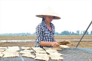 Độc đáo khô cá sấu ở An Giang