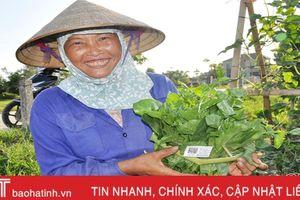Nông nghiệp là trụ cột kinh tế của Hà Tĩnh thời gian tới