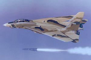 Lý do Mỹ muốn tiêu diệt phi đội F-14 Tomcat của Iran