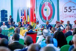 Thúc đẩy đồng tiền chung khu vực Tây Phi