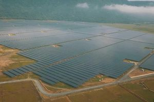 Nhà máy điện Mặt trời 3000 tỷ ở An Giang đi vào hoạt động