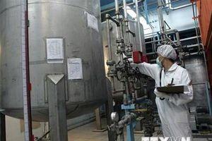 Iran sẵn sàng làm giàu urani ở cấp độ cao hơn so với quy định