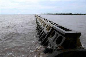 Thực hiện nhiều giải pháp bảo vệ đê biển Tây