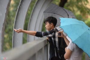 Lục bát trong mưa