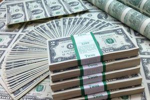 Tỷ giá ngoại tệ hôm nay 6/7: Đà rơi dừng lại, USD ổn định