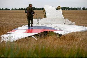 Ukraine bắt 'nhân chứng quan trọng' vụ bắn rơi MH17