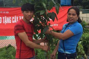 Cô giáo vùng cao 'bắc cầu' mang 35 nghìn cây giống, phủ xanh đất trống đồi trọc