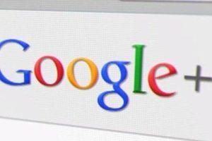 Lý do Google bị đình chỉ 1 dịch vụ ở New Zealand
