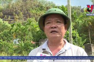 Cháy rừng tại Đà Nẵng