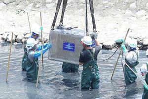 Hà Nội: Tranh cãi cống hóa sông Tô Lịch, Kim Ngưu