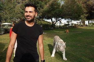 Thăm dinh thự Hoàng gia Dubai, nơi hổ, sư tử đi lại trong nhà