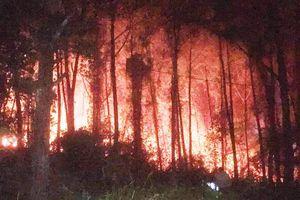 Rừng thông hơn 30 năm tuổi ở Huế bất ngờ bốc cháy dữ dội