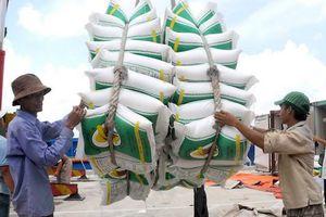 Xuất khẩu gạo tụt dốc