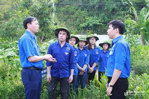 Tỉnh đoàn Nghệ An thăm, tặng quà các đội thanh niên tình nguyện
