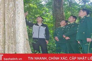 Nghe lời chiến sỹ BĐBP Hà Tĩnh, người dân không còn phá rừng, bẫy thú