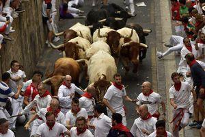 Năm người nhập viện sau khi tham dự lễ hội với chạy đua bò tót tại Tây Ban Nha