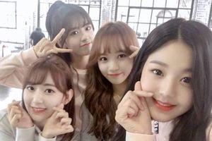 Nhóm nữ Kpop xinh đẹp bị chê khi cover hit nổi tiếng của AKB48