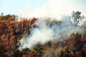 Lửa bao vây núi Đá Tợ, kèm theo tiếng nổ của lựu đạn