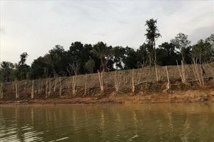 Sơn Tây, Hà Nội: Lợi dụng thi công dự án để lấn chiếm hồ Đồng Mô