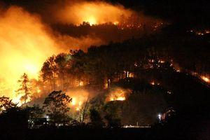 Rừng thông ở Hà Tĩnh cháy ngùn ngụt, người dân sơ tán trong đêm