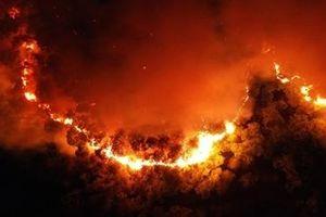 Từ vụ cháy rừng ở núi Hồng Lĩnh: Thổn thức sau bão lửa